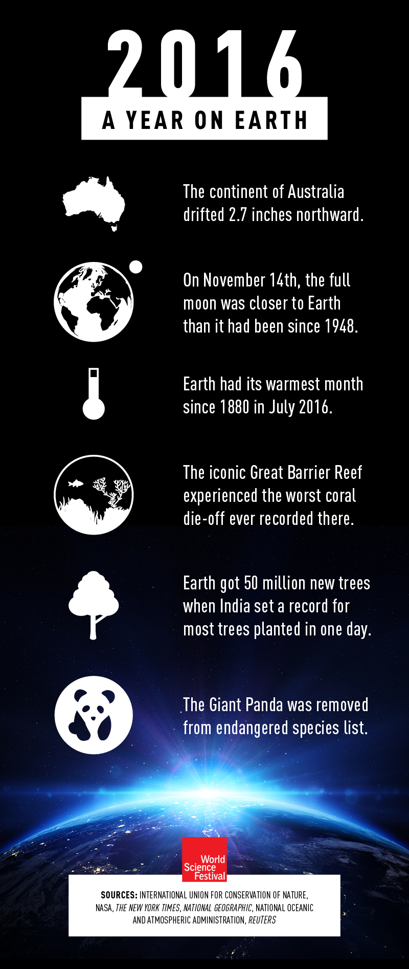2016 A Year on Earth